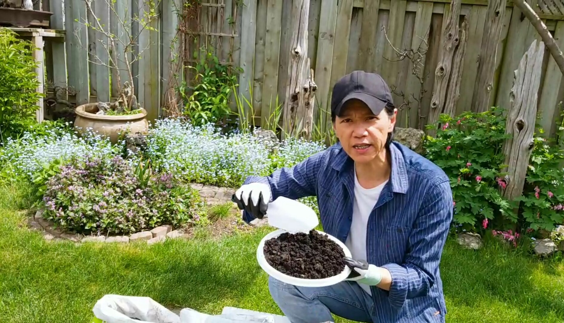 嘉華HandyLam – 今次講植物生長要靠「泥」!