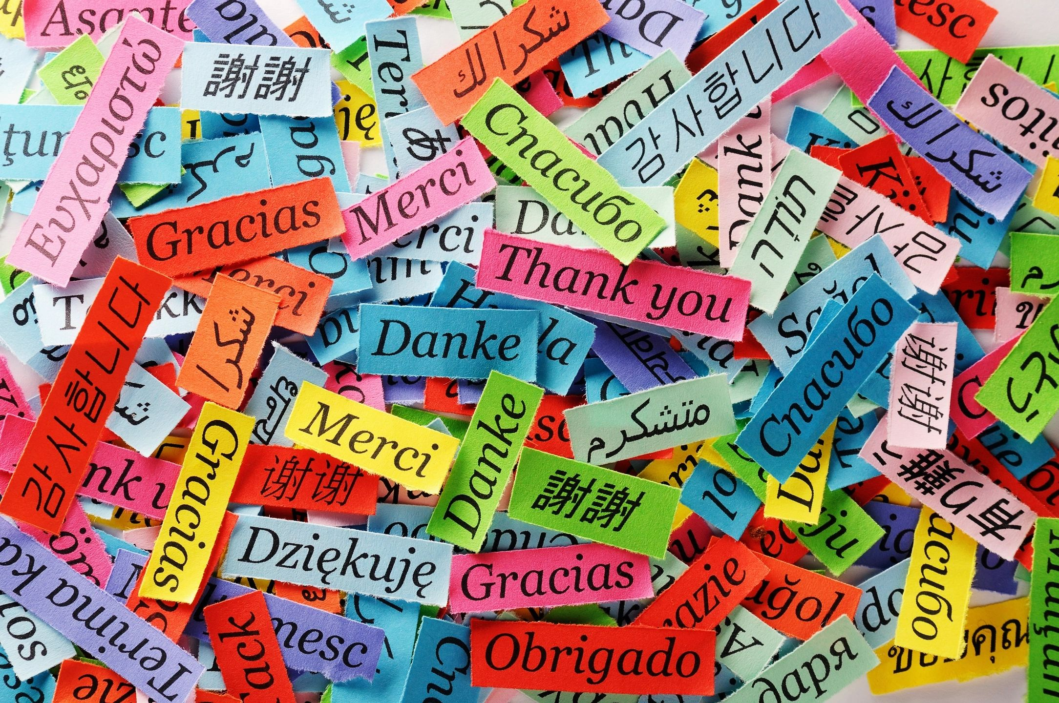 How to Efficiently Learn a New Language