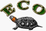 ECO Wear & Publishing, Inc