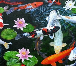 Fish & Insects