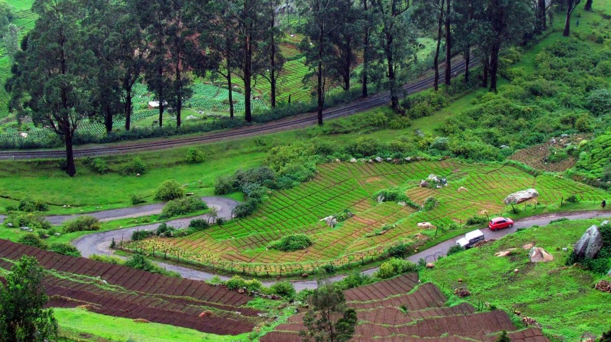 Ooty in Tamil Nadu