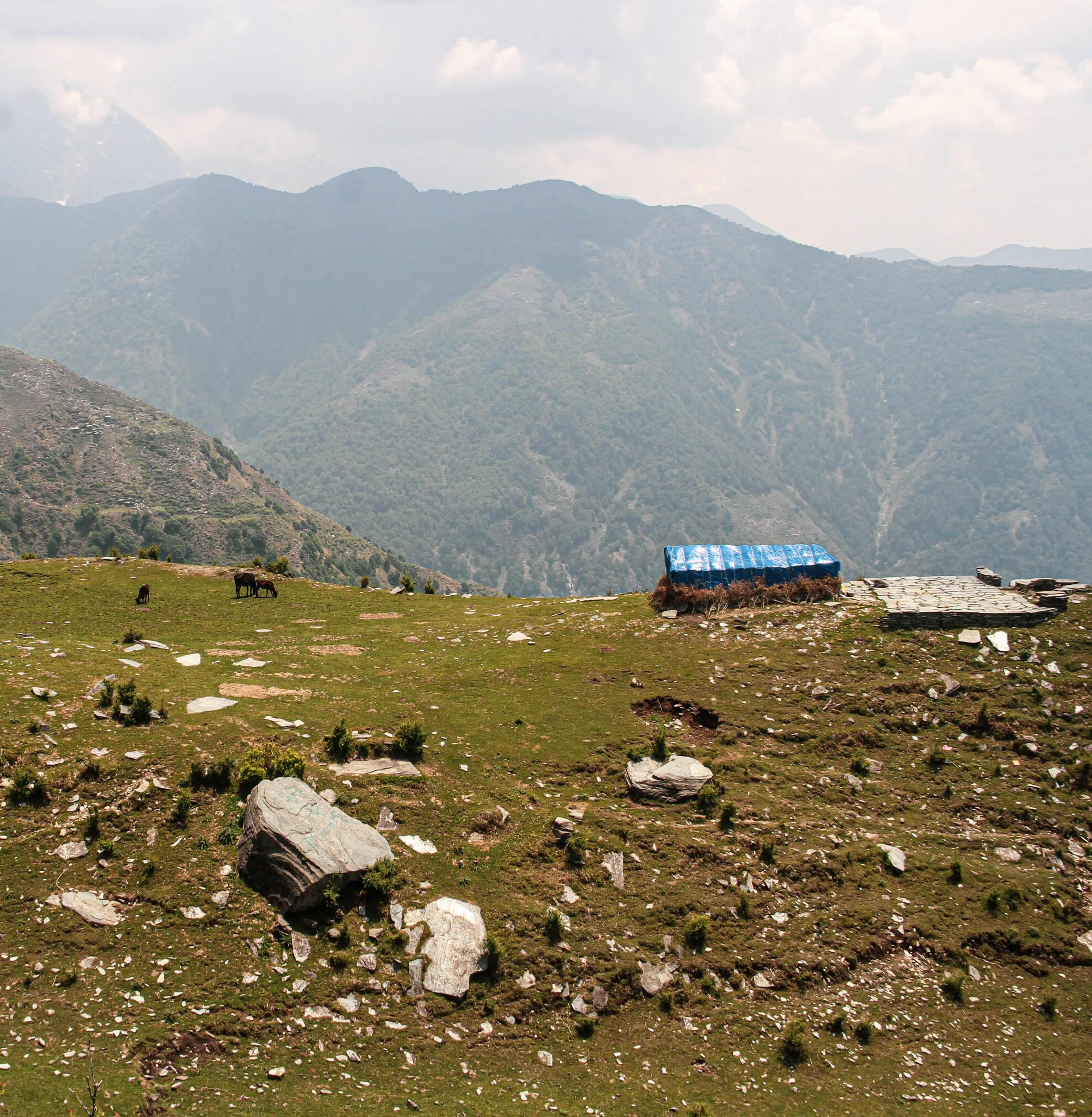 Triund Temperature