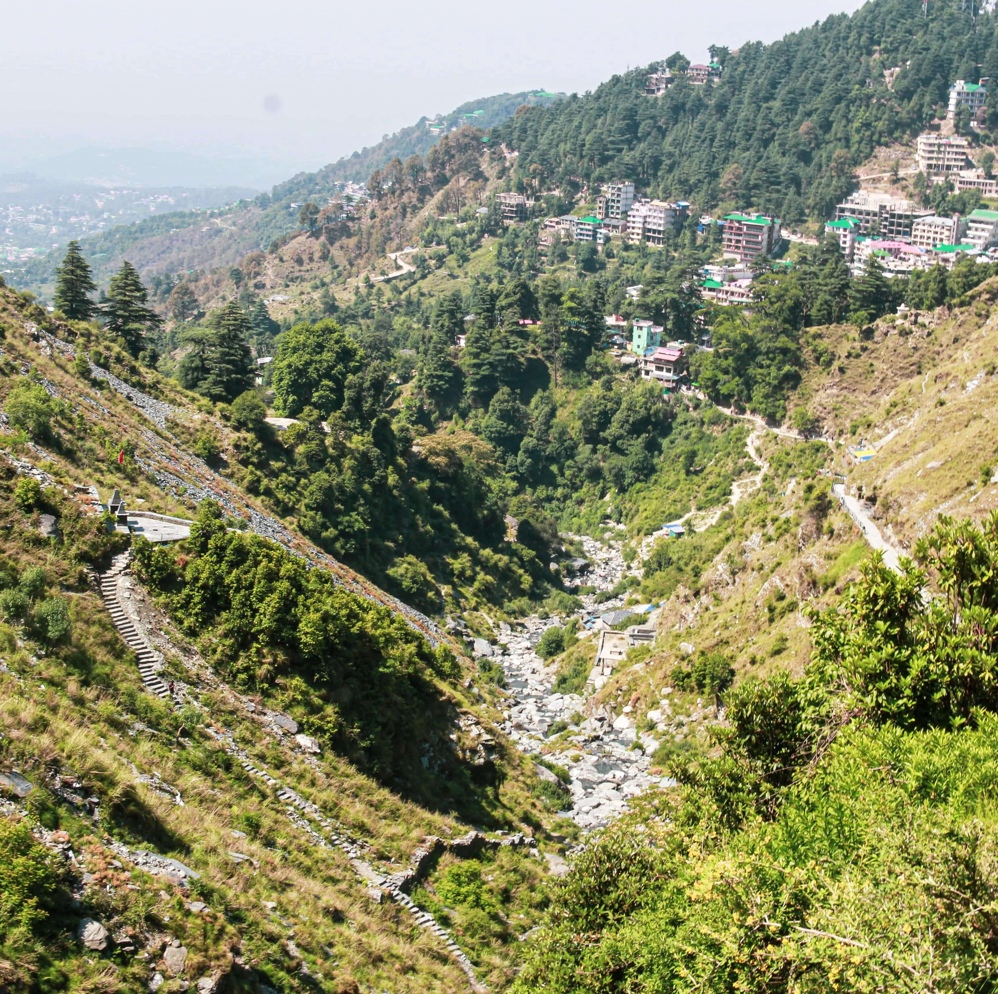 Triund Trek from McLeod Ganj