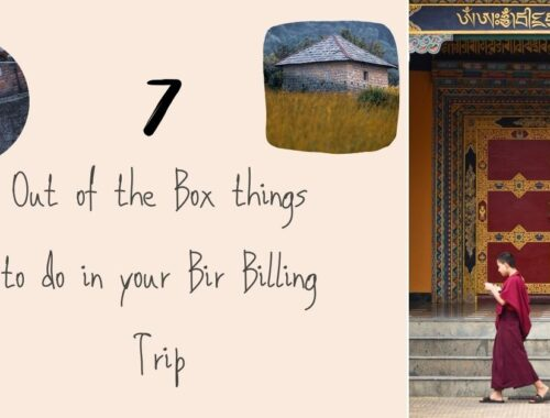 7 out of the box things to do in Bir Billing (1)