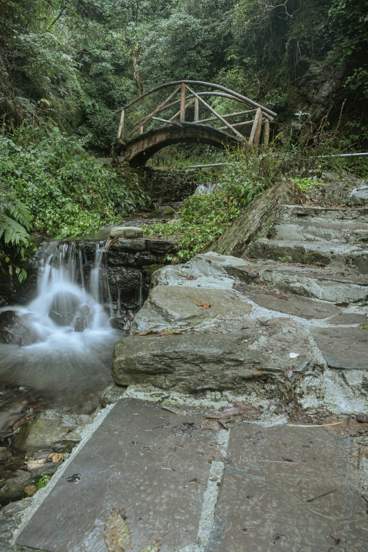 River Stream & Bridges