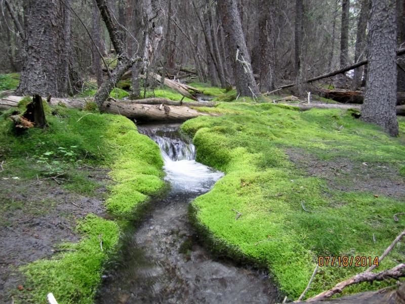 Looks like hiking in B.C.
