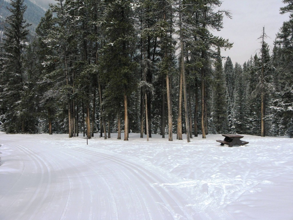 Banff Springs - Cross Country Skiing - Photo # 9