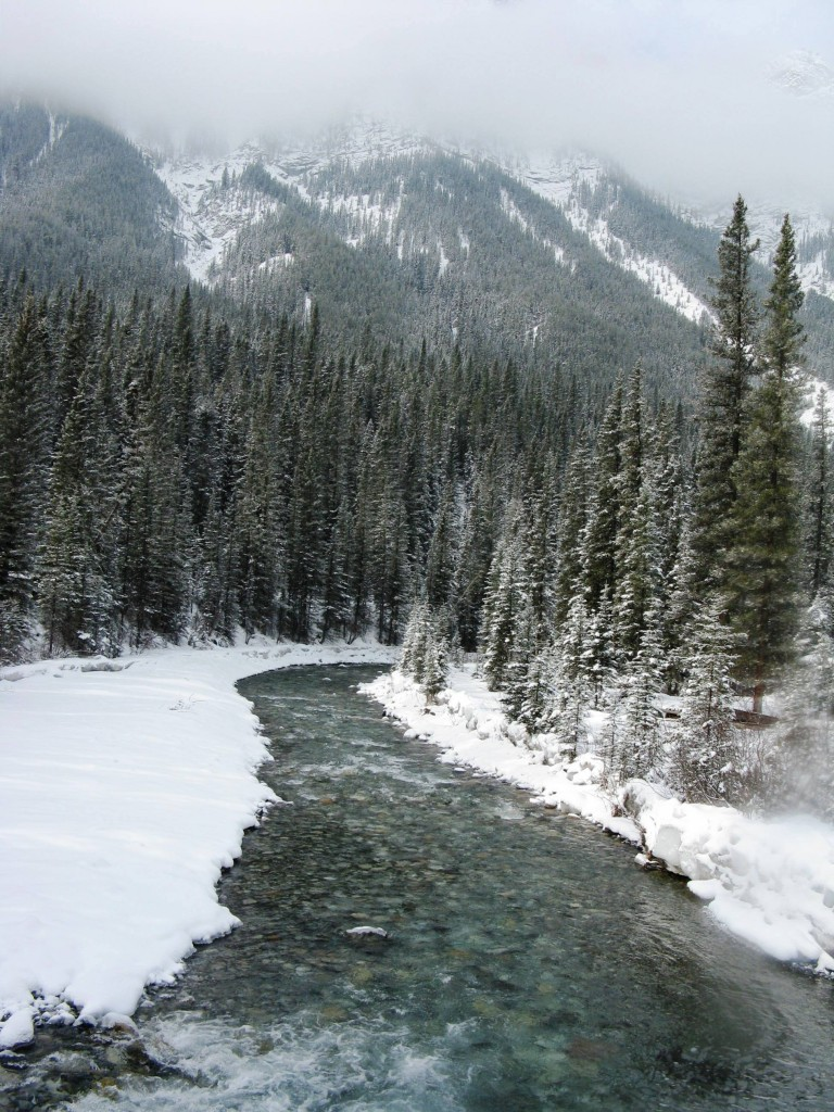 Banff Springs - Cross Country Skiing - Photo # 12