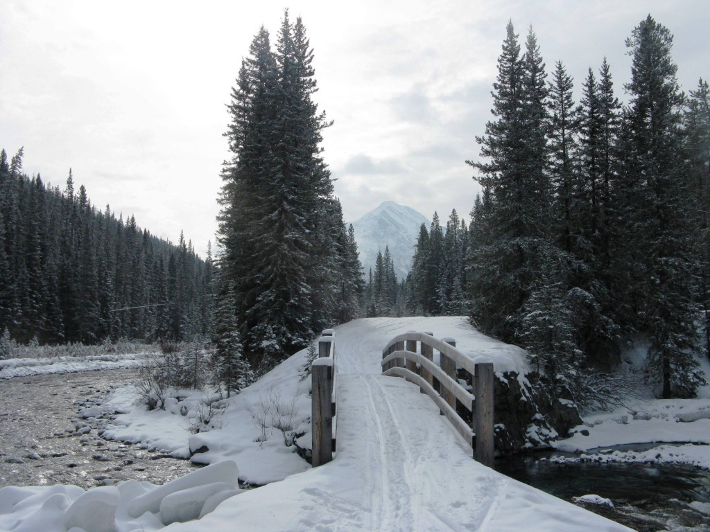 Banff Springs - Cross Country Skiing - Photo # 11