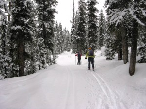 Lake Louise - Cross Country Skiing - Photo # 1