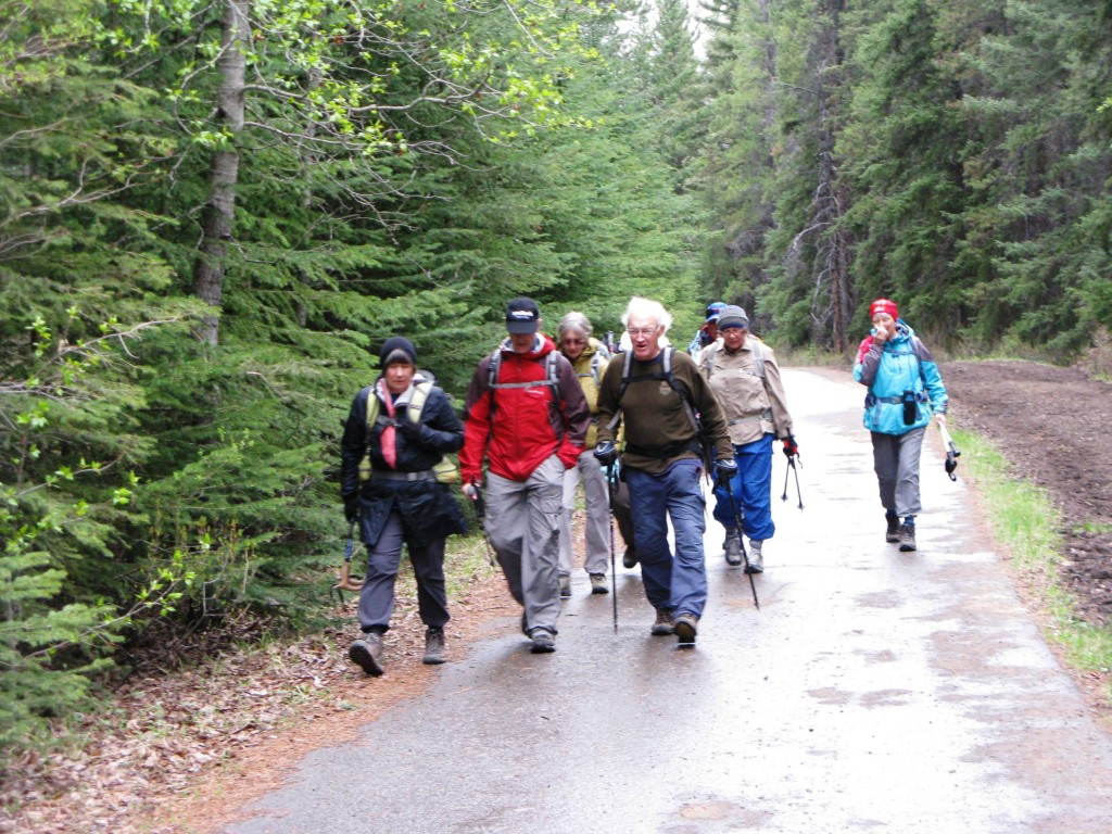 The group on the pavement on the Sundance Trail heading toward the Cave & Basin