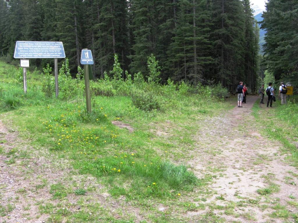 Do not turn up power line to Skogan Pass