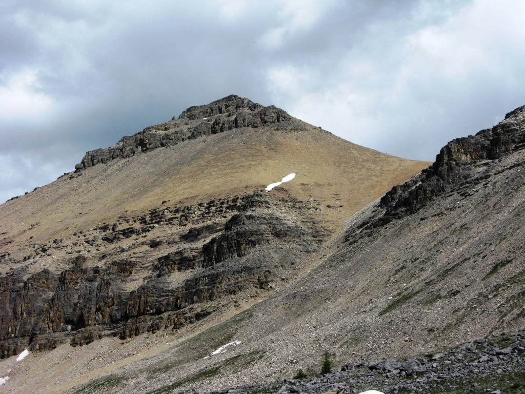 Helena Ridge