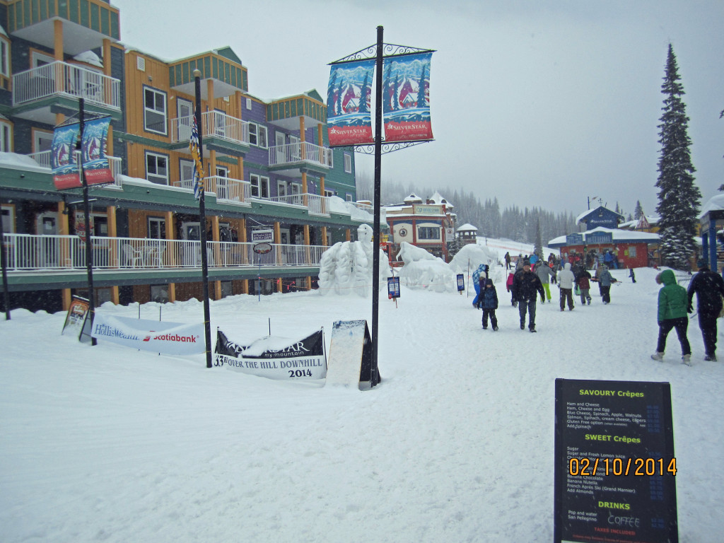 Siver Star Village