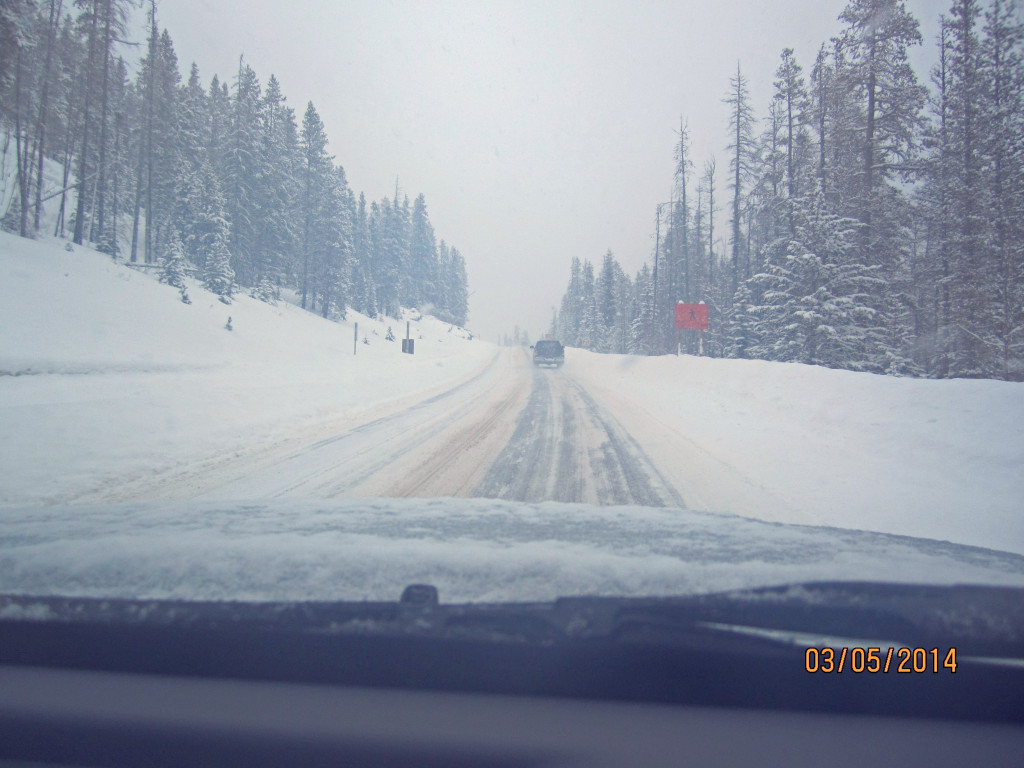 Still snowing as we leave Sunshine Village for Canmore