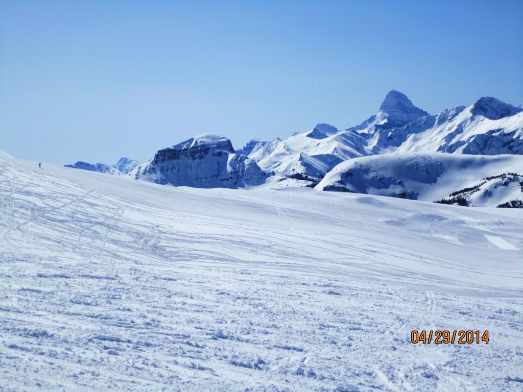 Mt Assiniboine looking across South Divide
