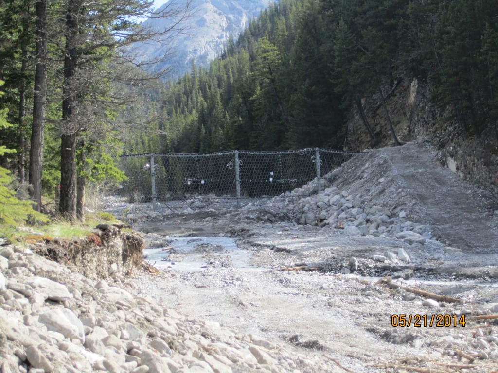 New catch netting for Cougar Creek