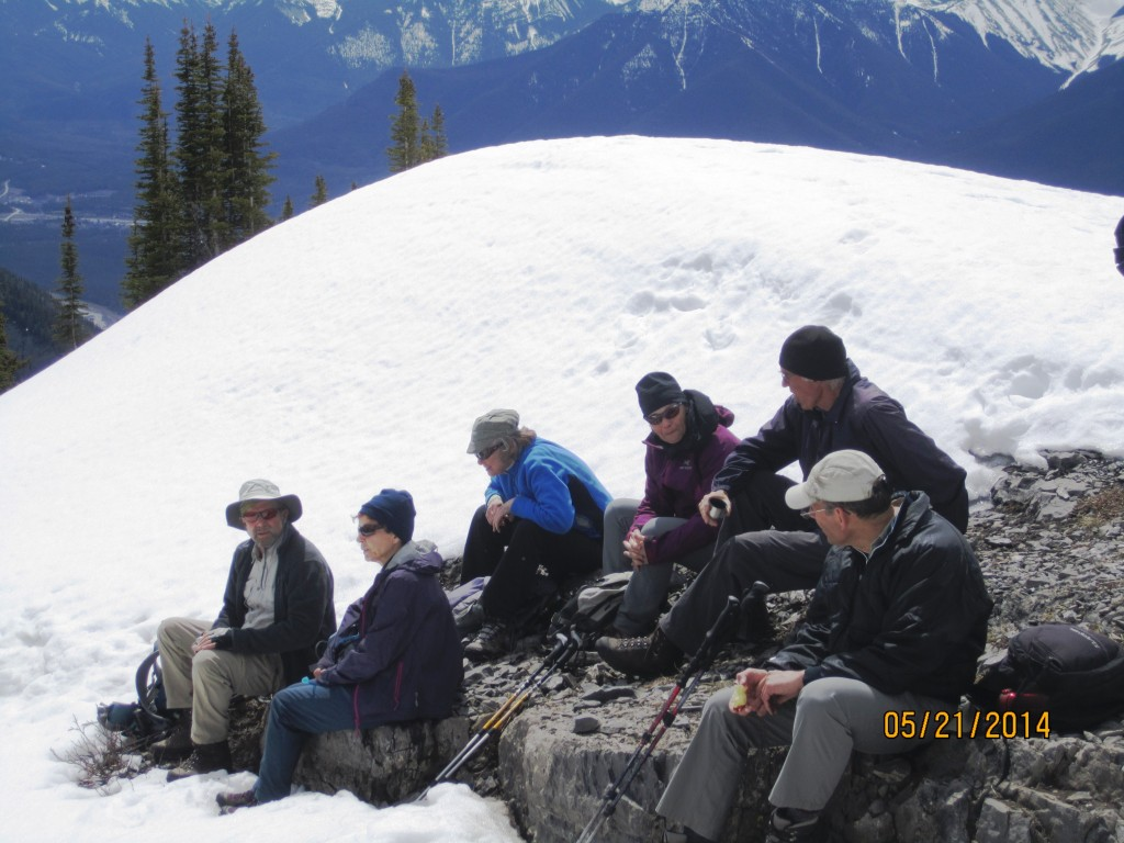 The group having lunch
