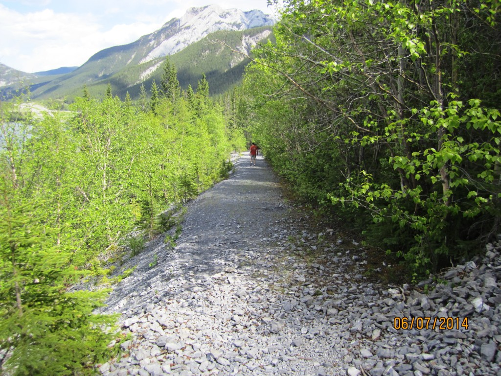 Path/Old rd up to Vaualt