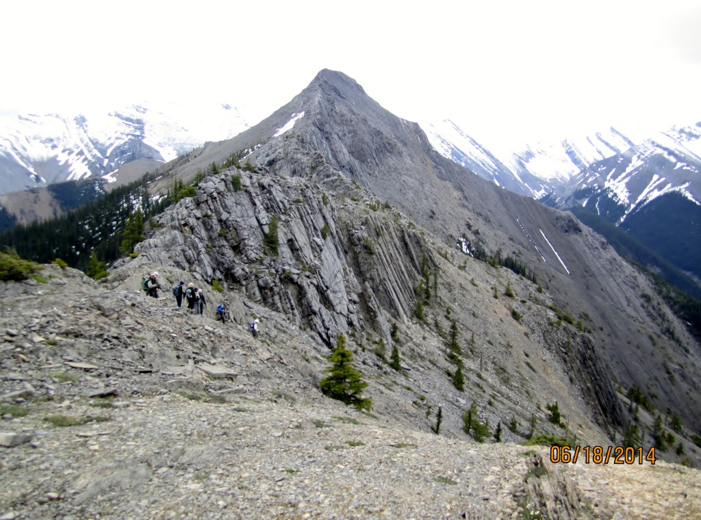 View of the summit of Wasootch Ridge