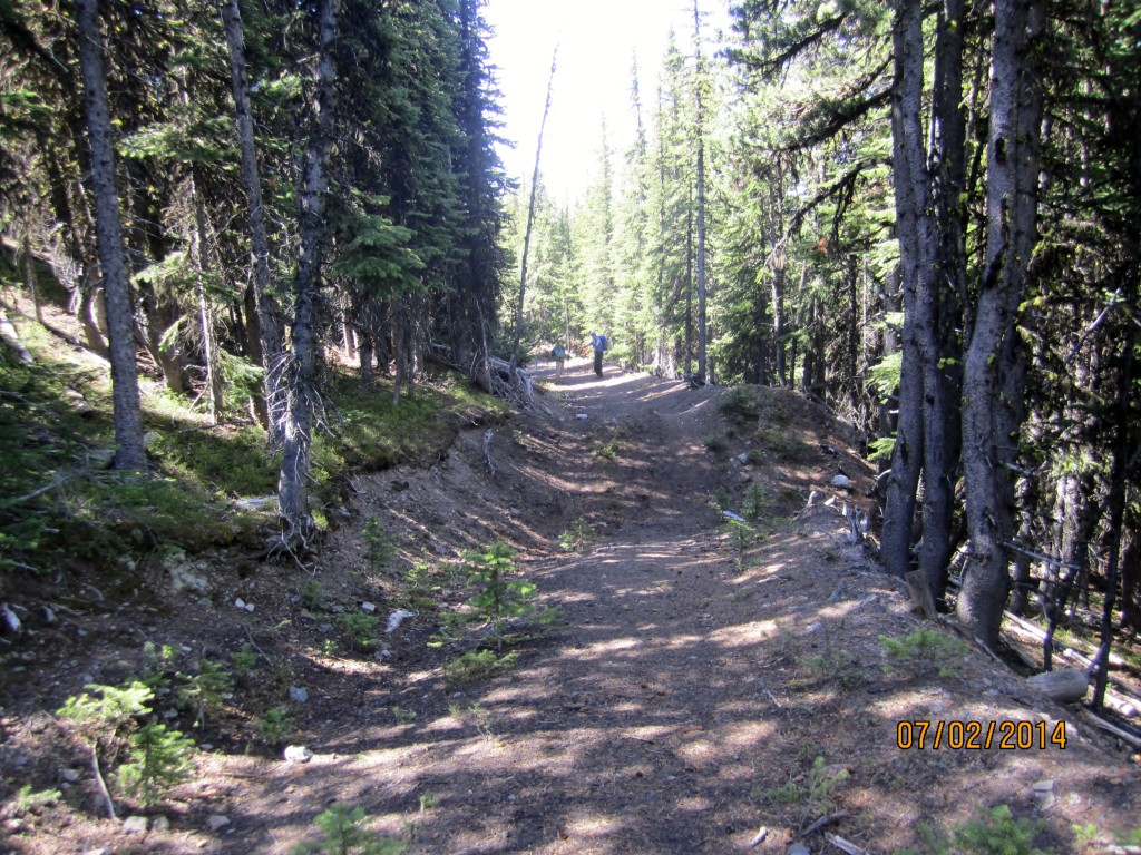 Trail road in good condition