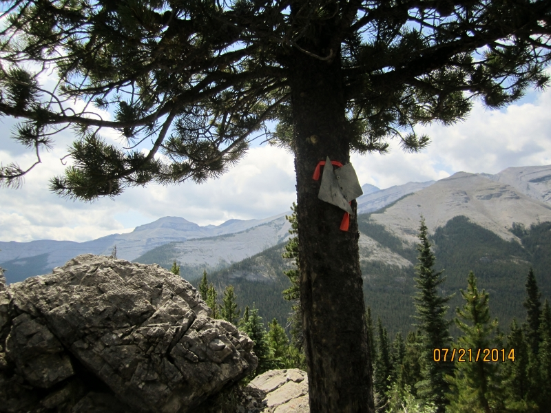 At the sign left to the meadow right to the elbow river