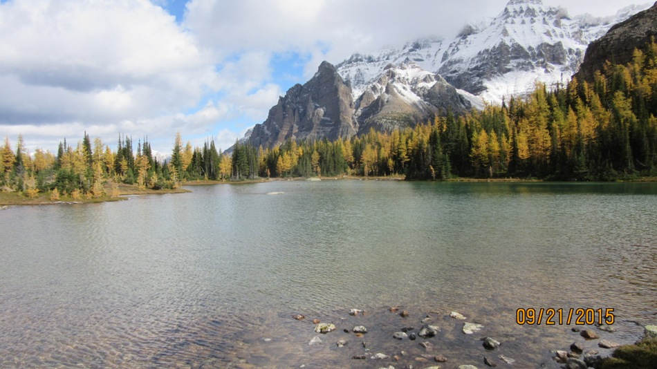 Schaffer lake