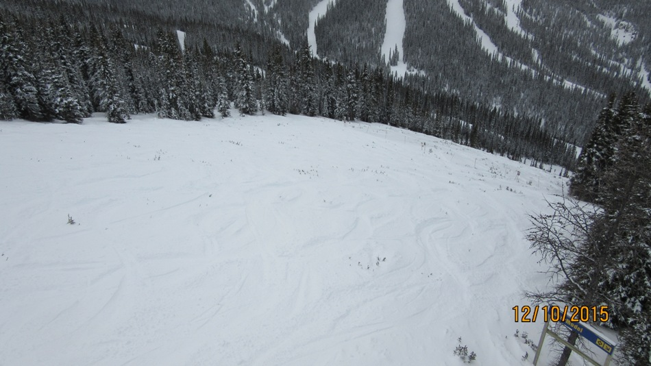 Free Fall. Some small trees but great snow