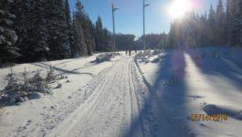 Blueberry Hill Cross Country Skiing Kananaskis