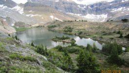 Crowfoot Lake (unofficial name)