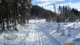 Pipestone Cross Country Skiing 2018
