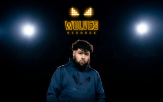 wolves records