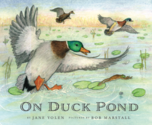 On-Duck-Pond