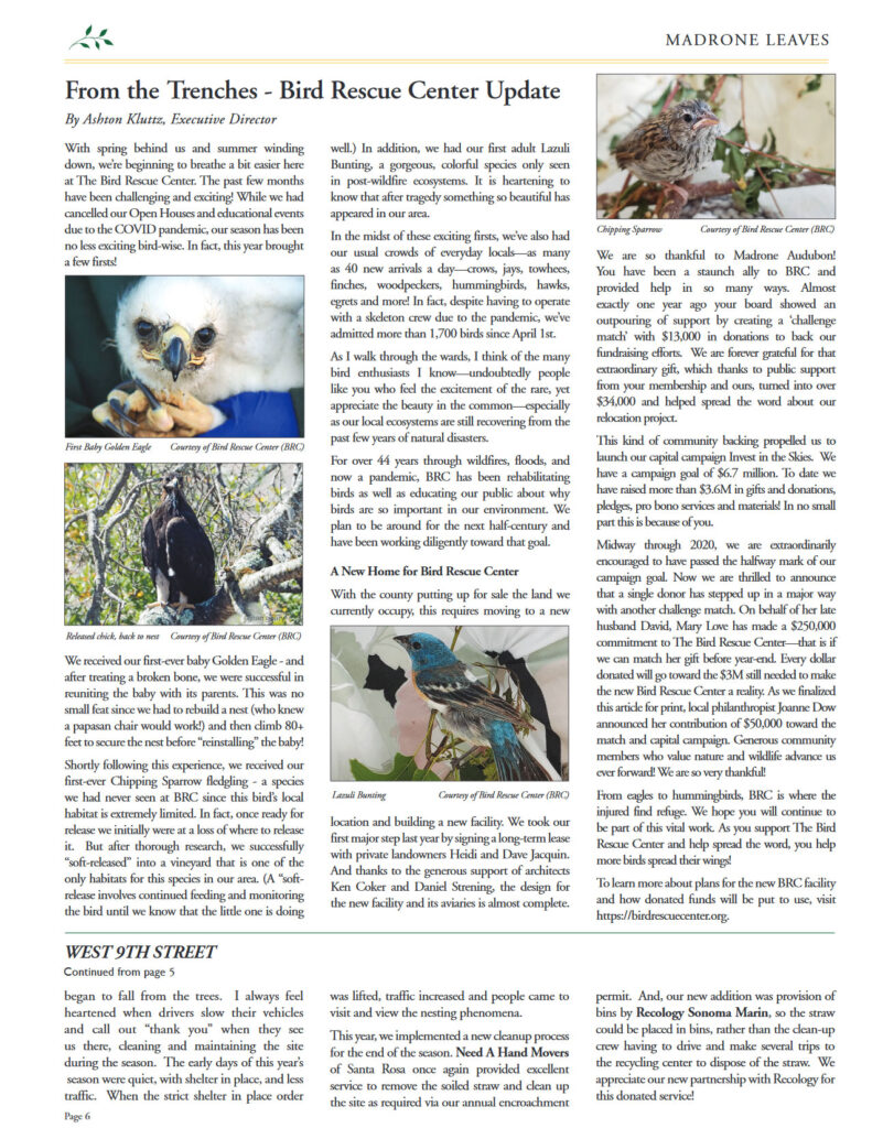 Leaves Issue September