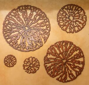 Wooden discs wall art pieces in assorted sizes