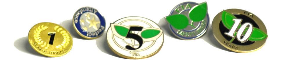 FIA Pins