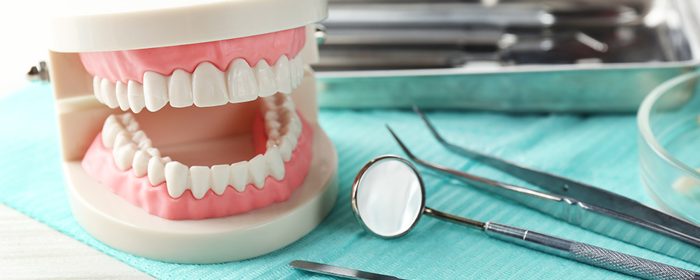 Dentist's tray with different tools and model of teeth.