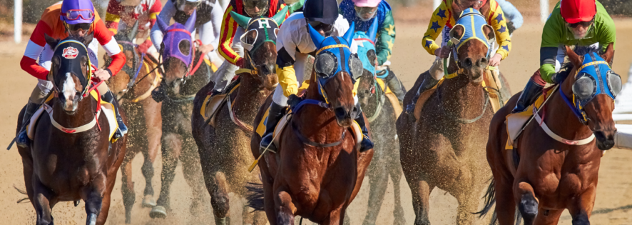 Video Horse Racing
