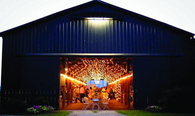 Harvest to Hand: Farm families collaborate for dinner to support agriculture education