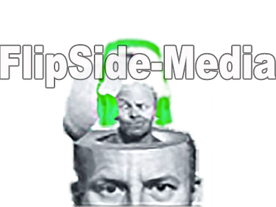 flipside digital media logo digital music distribution internet marketing