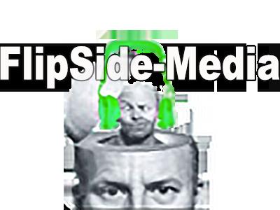 flipside digital media logo digital music distribution internet marketing