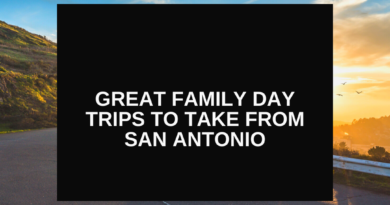 Great Family Day Trips to Take From San Antonio - Live From The Southside