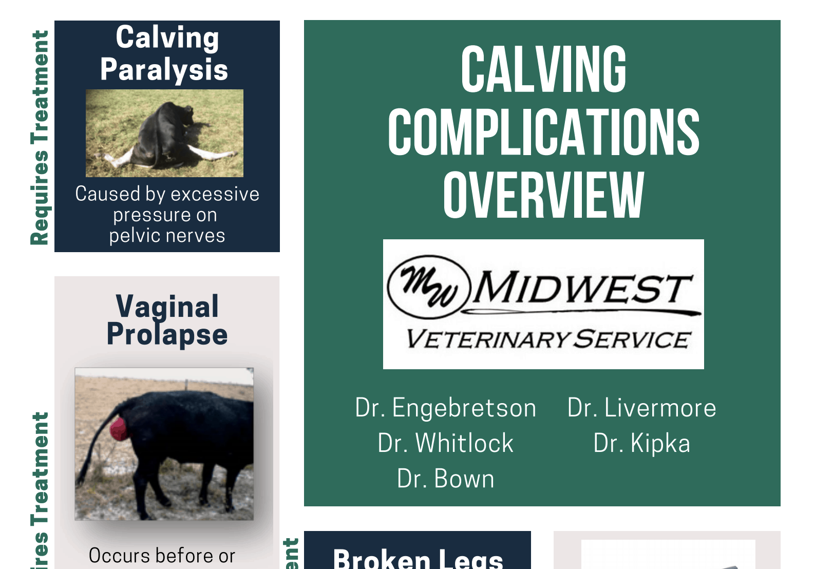 Midwest Veterinary Services   Your source for quality vet services, for both companion and production animals. Serving the Tri-State area of Iowa, Minnesota, South Dakota, and surrounding areas. We also offer a great selection of online veterinary supplies in our online store.