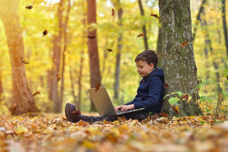 boy on laptop in the weeds with leaves falling