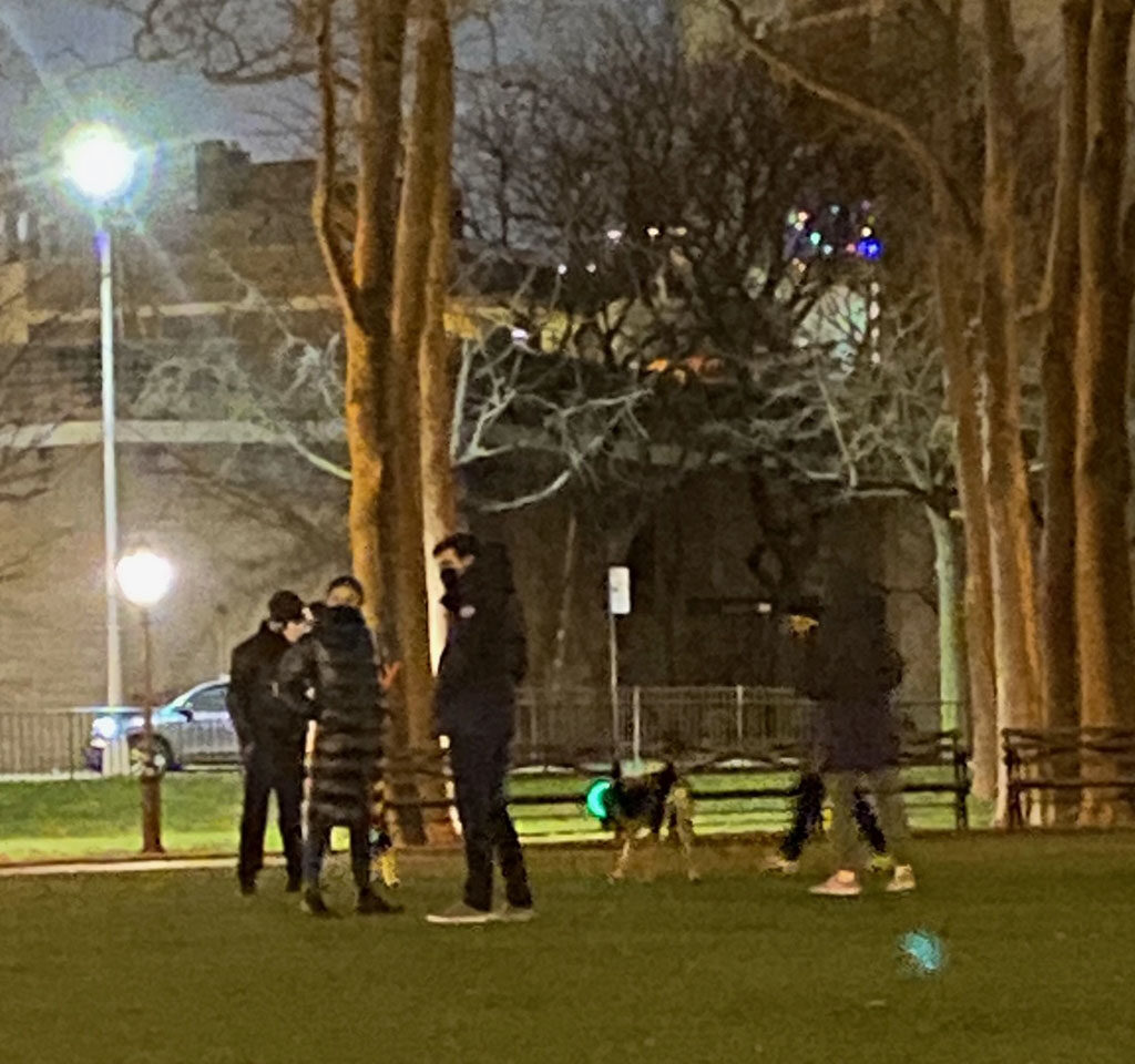 a night image of a couple with a dog on the astroturf