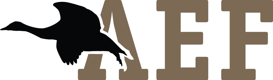 Arlington Education Foundation 501(c)3