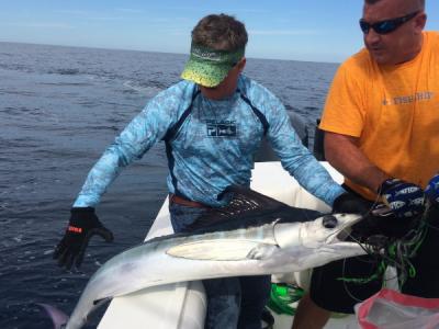 BGB 2015 Catch