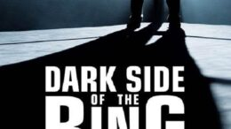 Dark Side of the Ring Logo