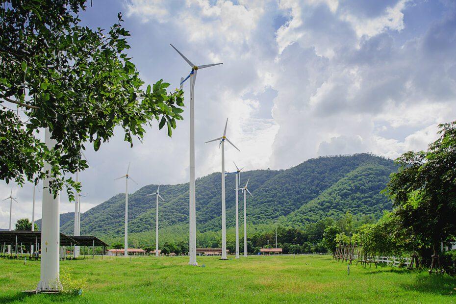 wind farm in clean environment