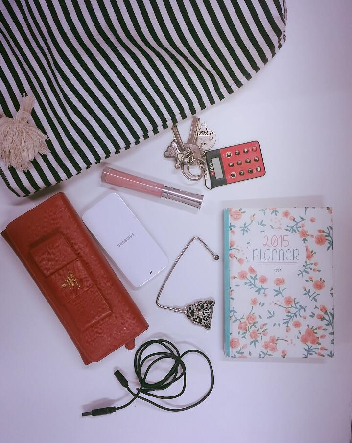 day-8-in-handbag